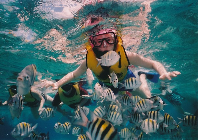 Snorkeling off the Belize Barrier Reef