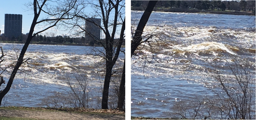 Flooding in Mousette Park, Gatineau